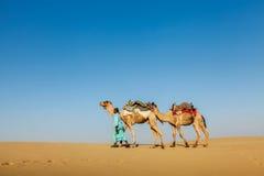 Cameleer (driver del cammello) con i cammelli nel Ragiastan, India immagine stock libera da diritti