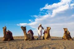 Cameleer en de kudde Royalty-vrije Stock Afbeelding