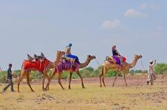 Cameleer i turyści w pustyni w Jaisalmer, India Zdjęcie Royalty Free