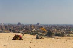 Cameleer och kamel- och stadssikt på den giza pyramiden, cairo i egy Royaltyfri Fotografi