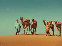 Cameleers με τις καμήλες στην έρημο - εκλεκτής ποιότητας αναδρομικό ύφος Στοκ Φωτογραφία
