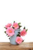 Camellia flower arrangement Stock Images
