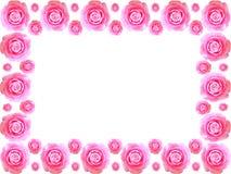Camellia flower frame Royalty Free Stock Photo