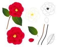 Camellia Flower Outline blanche et rouge D'isolement sur le fond blanc Illustration de vecteur Photographie stock