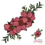 Camellia Flower Realistic Wreath Arrangements Fotografie Stock