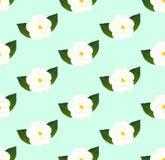 Camellia Flower Seamless branca no fundo verde da hortelã Ilustração do vetor ilustração stock