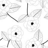 Camellia Flower on White Background. Vector Illustration. Royalty Free Stock Photo