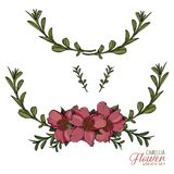 Camellia Flower Wreath Vector Collection Immagini Stock