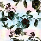 Camellia - flowers, buds and leaves - on a watercolor background.Collage of flowers, leaves and buds on a watercolor background. D. Ecorative composition on a stock illustration