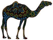 Camello étnico Fotos de archivo libres de regalías