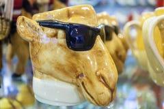 Camello con las gafas de sol Fotografía de archivo libre de regalías