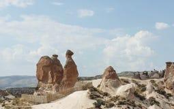Camello de piedra Imágenes de archivo libres de regalías
