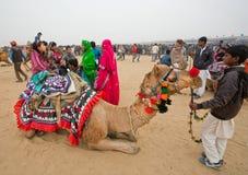 Camello del montar a caballo de la familia del pueblo en desierto Fotos de archivo libres de regalías