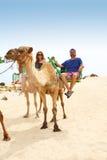 Camello del montar a caballo de los pares en las islas Canarias Fotografía de archivo libre de regalías