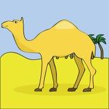 Camello en el desierto ilustración del vector