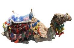 Camello en harness Foto de archivo libre de regalías