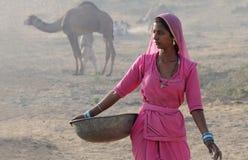 Camello noviembre justo - 13 de Puskar Foto de archivo libre de regalías