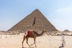 Camello y jinete cerca de la pirámide de Menkaure fotos de archivo