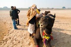 Camello y su jinete en la India Imagen de archivo libre de regalías