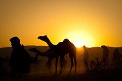 Camellos con la gente en la salida del sol fotos de archivo libres de regalías