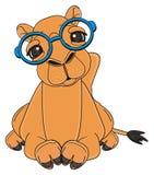 Camelo adulto no encontro dos vidros ilustração royalty free