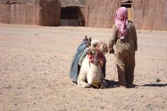 Camelo com o proprietário em uma vila egípcia fotografia de stock royalty free
