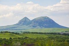 Camelo da montanha de Zheleznovodsk Imagens de Stock