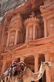 Camelo de PETRA Fotografia de Stock
