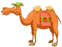 Camelo do personagem de banda desenhada Imagens de Stock