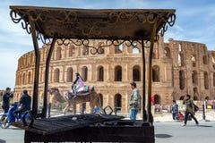 Camelo e Ampthitheater do EL Jem Fotos de Stock Royalty Free