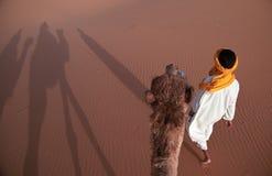 Camelo e seu excitador Imagem de Stock