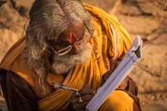 Camelo 2014 justo de Pushkar foto de stock