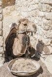 Camelo na vila Fotos de Stock