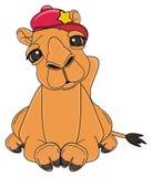Camelo no tampão vermelho com encontro da estrela ilustração stock