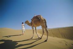 Camelo principal da mulher através do deserto Imagens de Stock