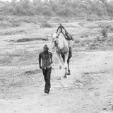 Camelo que rideing Foto de Stock Royalty Free
