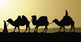 Camelos e beduínos no deserto Fotografia de Stock Royalty Free