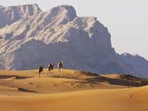 Camelos nas montanhas do deserto Fotos de Stock Royalty Free