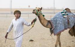 Camelos no al Khali Desert da RUB no quarto vazio, em Abu Dhabi Foto de Stock