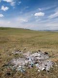 Camelote dans la steppe photo stock