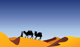 Camels and bedouin Royalty Free Stock Photo