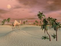 Camels in the desert - 3D render Royalty Free Stock Photography