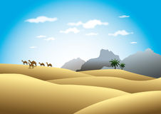 Camels in desert landscape. Arabian camels in sandy desert landscape with mountains in background Royalty Free Stock Photography