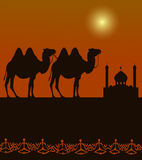 Camels on the desert with middle east architecture. Camels  silhouette on the desert with middle east architecture in the distance Royalty Free Stock Image