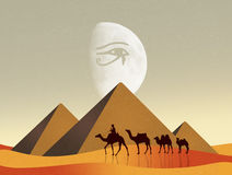 Camels in Egyptian landscape Stock Image