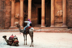 Camels in front of Al Khazneh, Petra. Camels in front of The Treasury in Petra. Al Khazneh (The Treasury; Arabic: الخزنة) is one of the most elaborate Stock Images