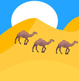 Camels go on desert Royalty Free Stock Image