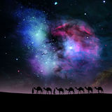 Camels in night. Camels in the stars sky background.Elements of this image furnished by NASA Stock Image