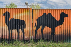 Camels painted on fence in Hodonin town Stock Photography