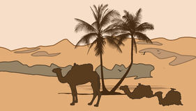 camels and palm tree. Very detailed vector illustration of african desert with camels and palm tree - each element can be edited separately Royalty Free Stock Photo